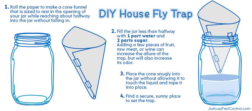 fruit fly trap do it yourself